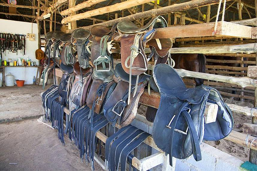 Well maintained horse riding gear at Phuket Horse Riding Club