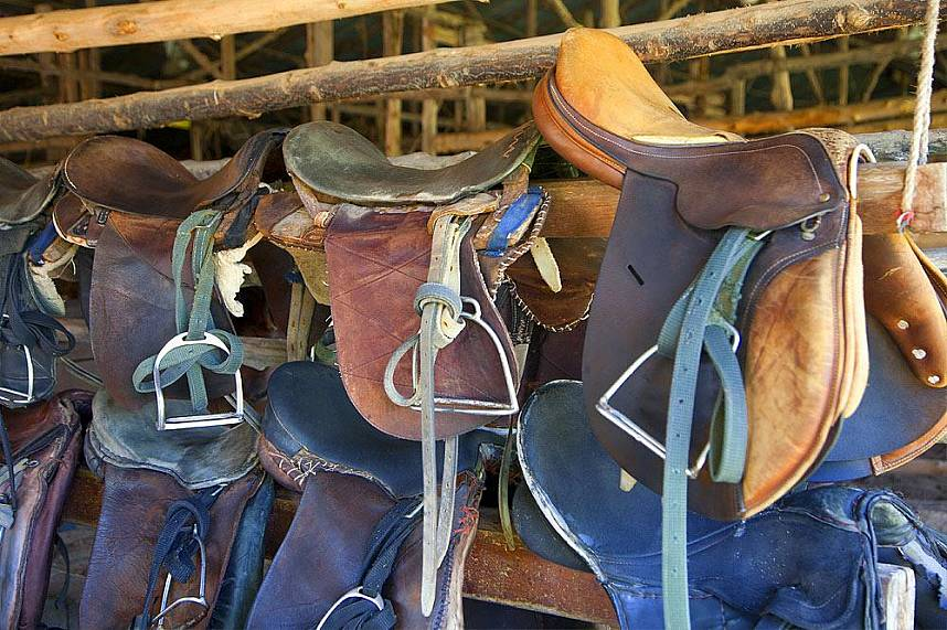 Horse riding gear at Phuket Horse Riding Club