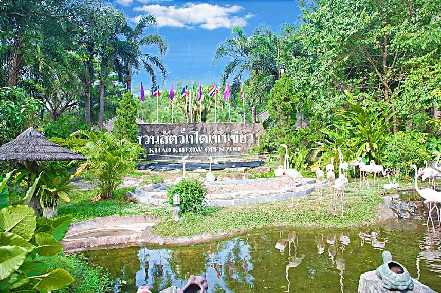 Khao Kheow Zoo Pattaya welcomes you