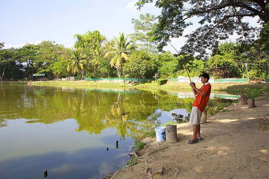 Tranquil and adventurous - Borsang Fishing Park Chiang Mai