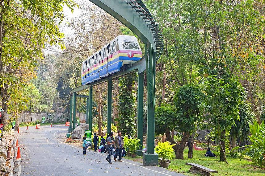 Tour Chiang Mai Zoo with the sky train, fun for the whole family