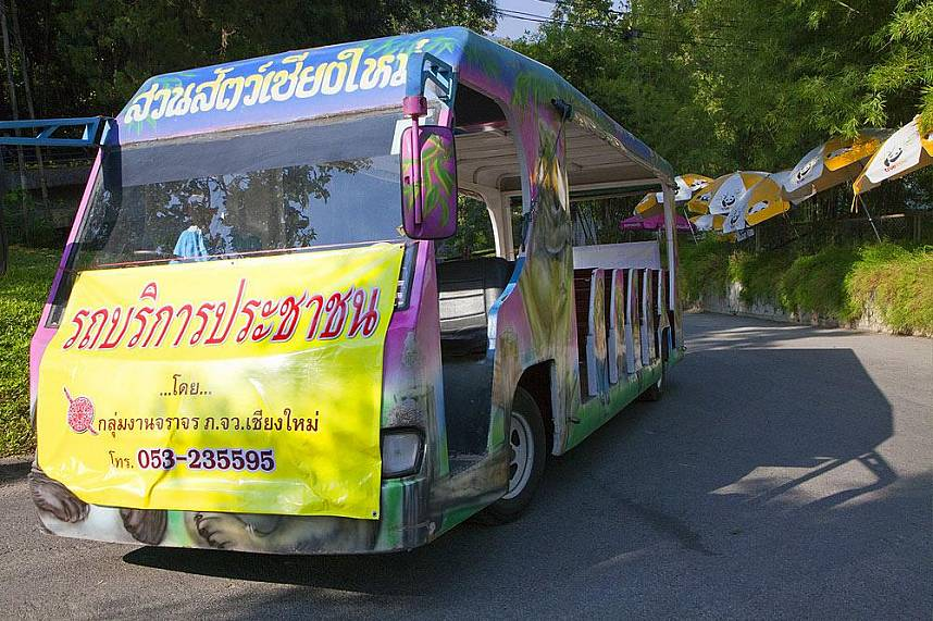 Comfortable tour at Chiang Mai Zoo with the bus