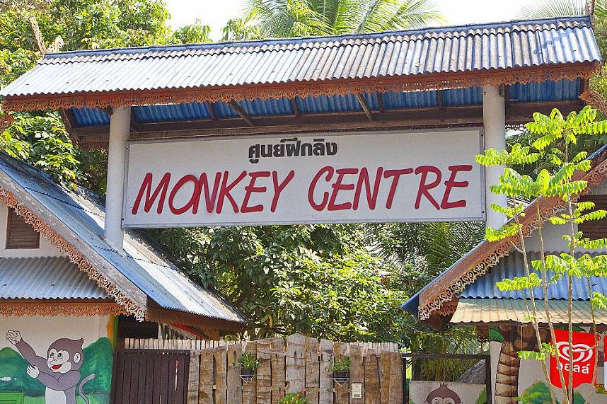 Chiang Mai Monkey Center welcomes you