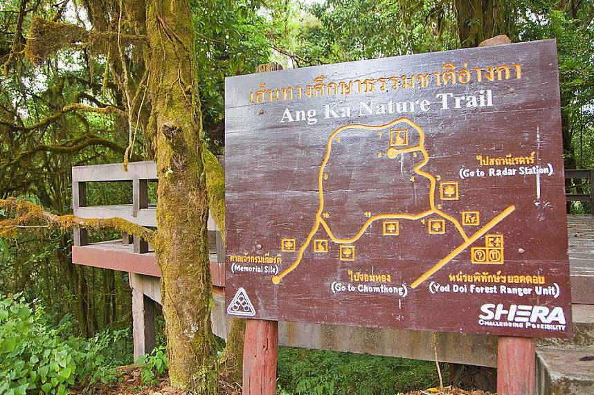 Do not miss a day trip from Chiang Mai to Doi Inthanon