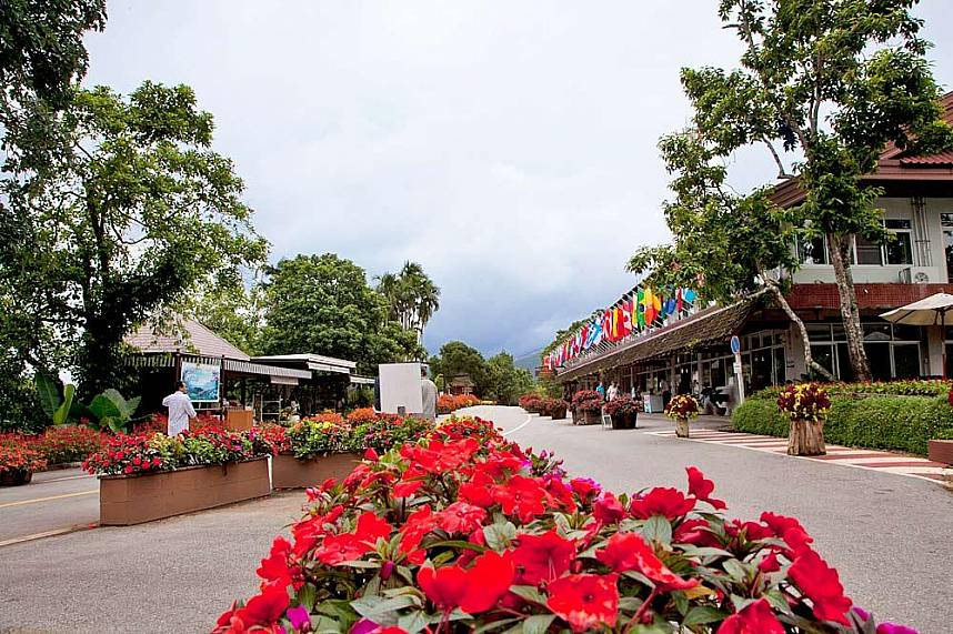 Doi Tung Mountain Chiang Rai is a famous tourist place in North Thailand