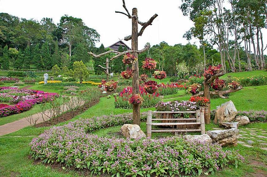 Amazing flower gardens at Doi Tung Mountain Chiang Rai