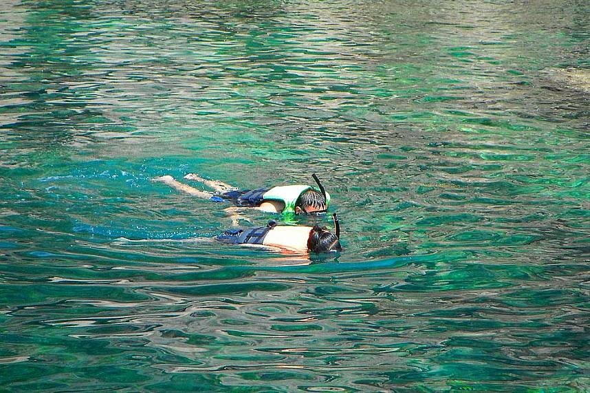 Amazing snorkeling at Koh Tao and Koh Nang Yuan