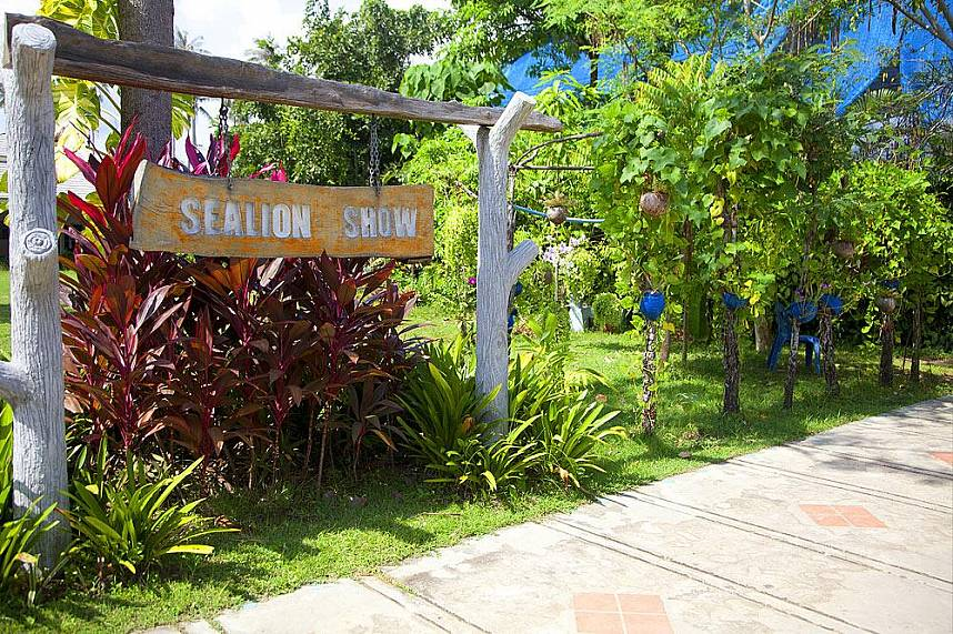 Samui Aquarium and Tiger Zoo has great shows for the whole family
