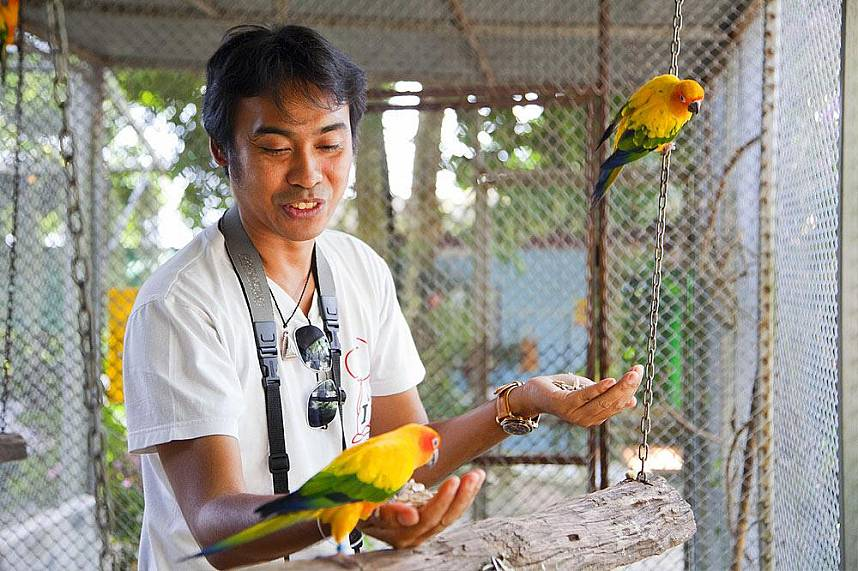 Feed some of the animals at Paradise Park Farm Koh Samui