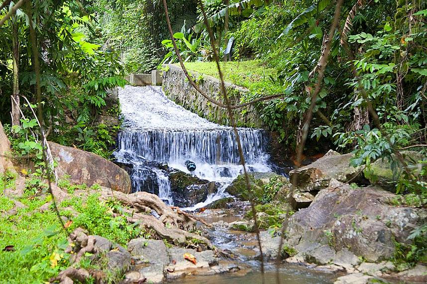 Idyllic stream through the virgin jungle of Phuket Get for one day away from Phuket beaches and enjoy the wonderful nature at Khao Phra Thrao National Park