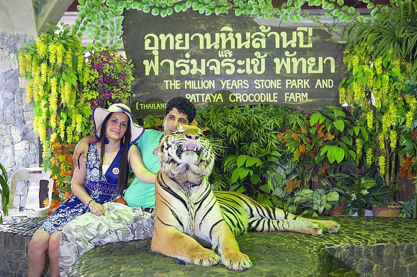 Million Year Stone Park Pattaya brings some real excitement to your Pattaya holiday