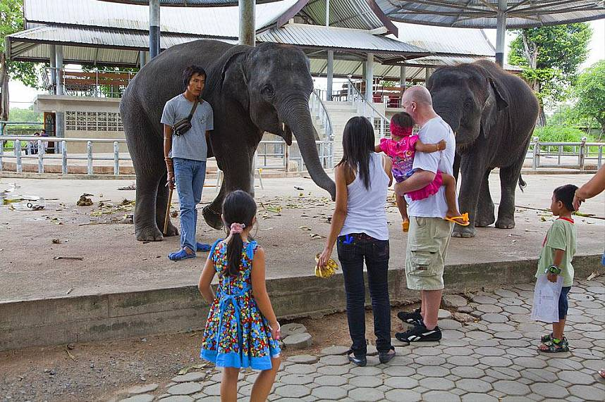 Million Year Stone Park Pattaya is a great place for a family day trip