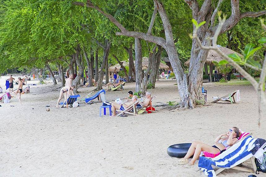 the huge trees along Sai Kaew Beach offer plenty of shade