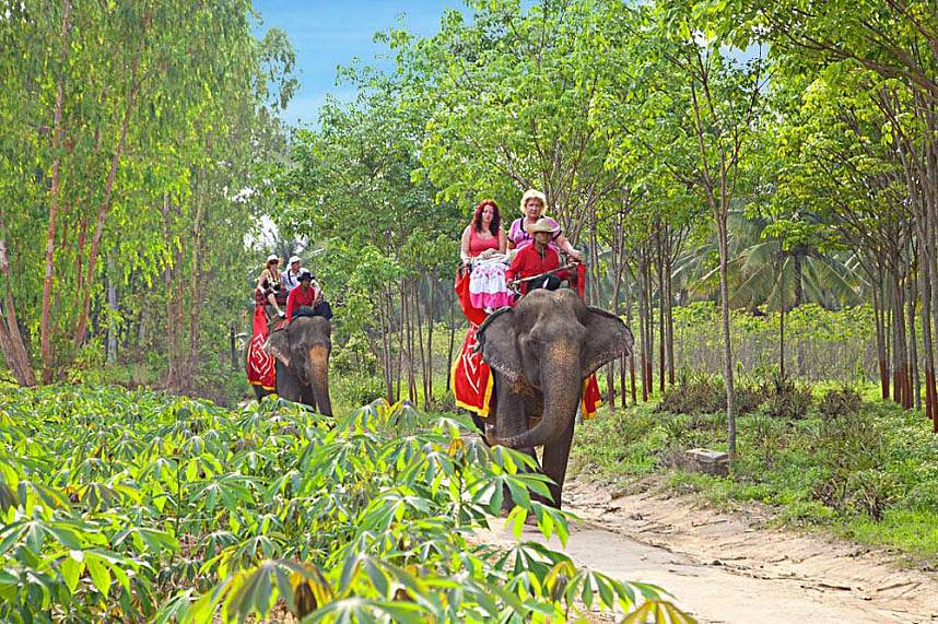 enjoy the scenic elephant ride at Changthai Thappraya Safari and Adventure Park