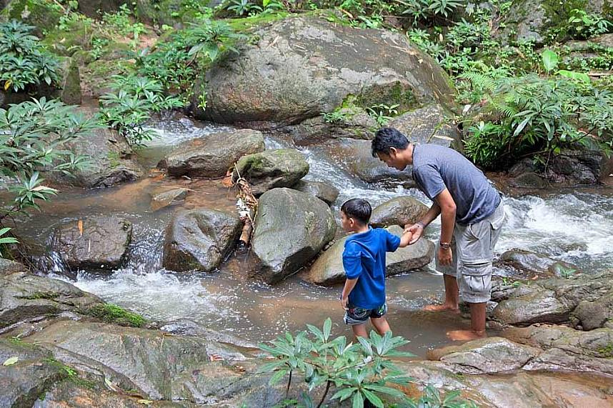 Enjoy a cold bath at a mountain stream during a Chiang Rai One Day Trip