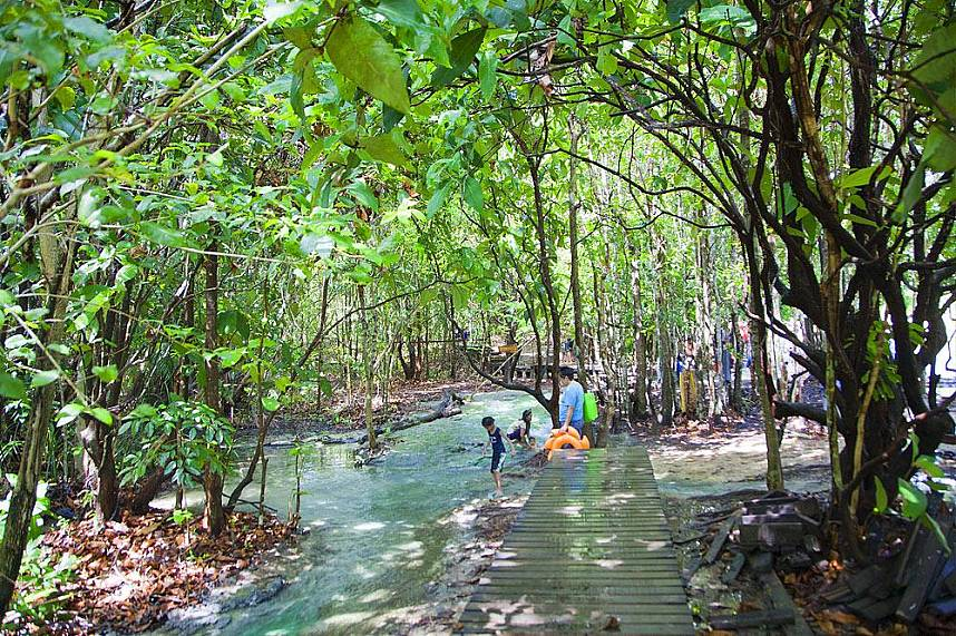 Small streams lead to the beautiful Emerald Pool near Krabi