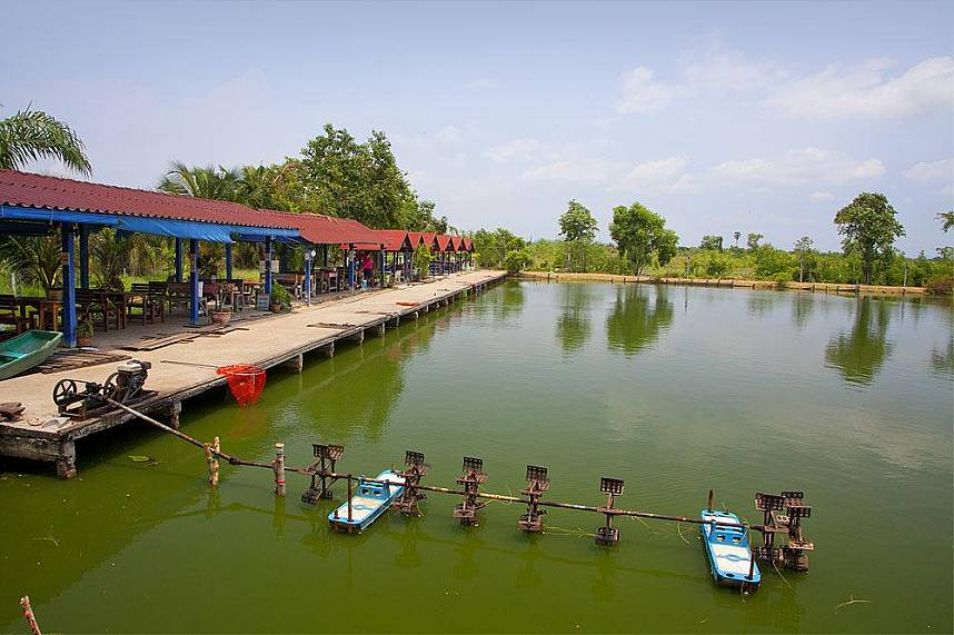 Pattaya Fishing Park is a great attraction for every fishing fanatic