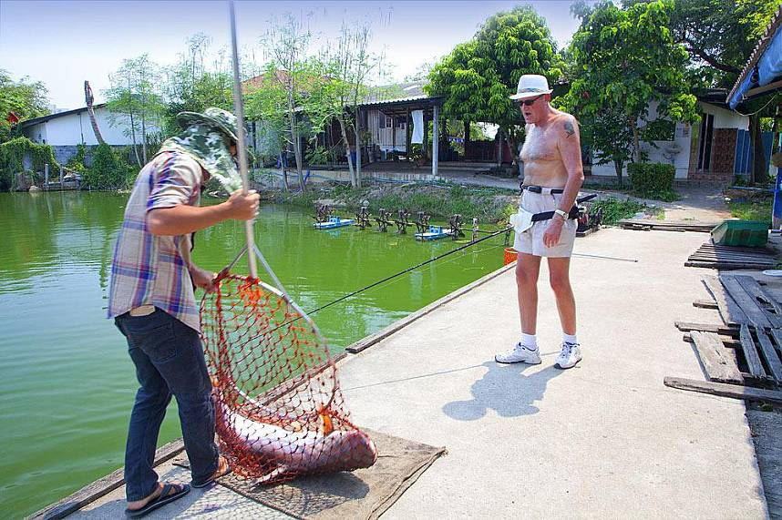 With some patience and still you will get huge fishes at Pattaya Fishing Park