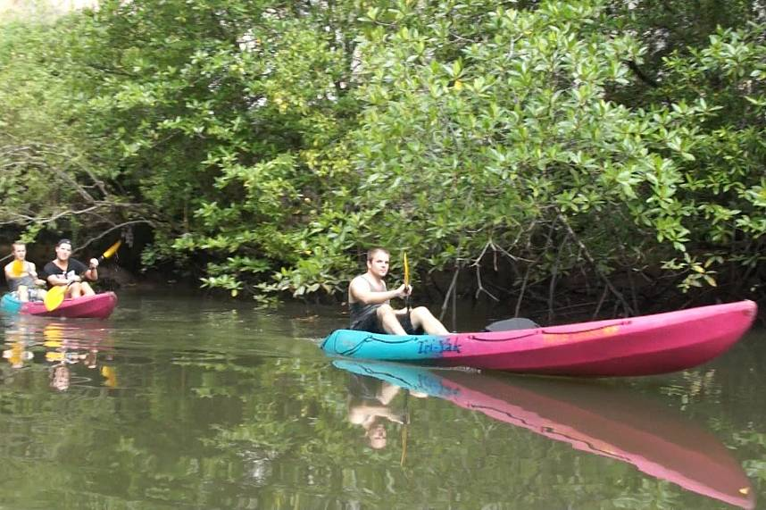 the mangrove forest in Krabi are best explored during a Sea Kayak Tour