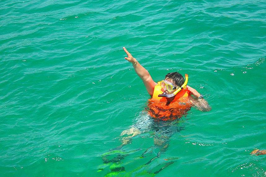 During a boat trip with Serenity Catamaran Pattaya you can snorkel in clear waters
