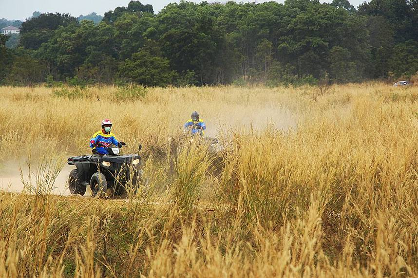 The off-road leads through huge areas of dry grass at ATV Pattaya Jungle Adventures