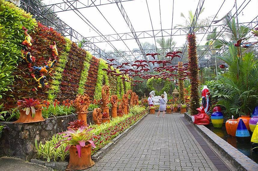 Amazing Thailand holiday at Nong Nooch Gardens Pattaya