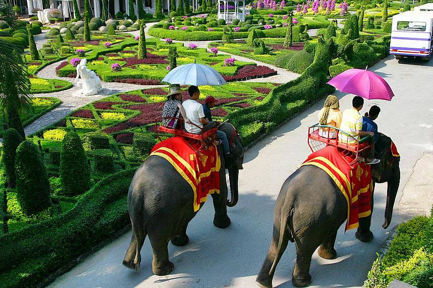 Pleasant ride on elephants along the picturesque Nong Nooch Gardens Pattaya