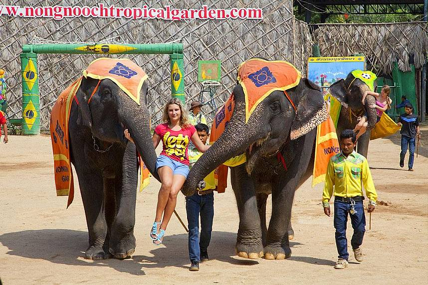 Fun for everybody at the Nong Nooch Gardens Pattaya