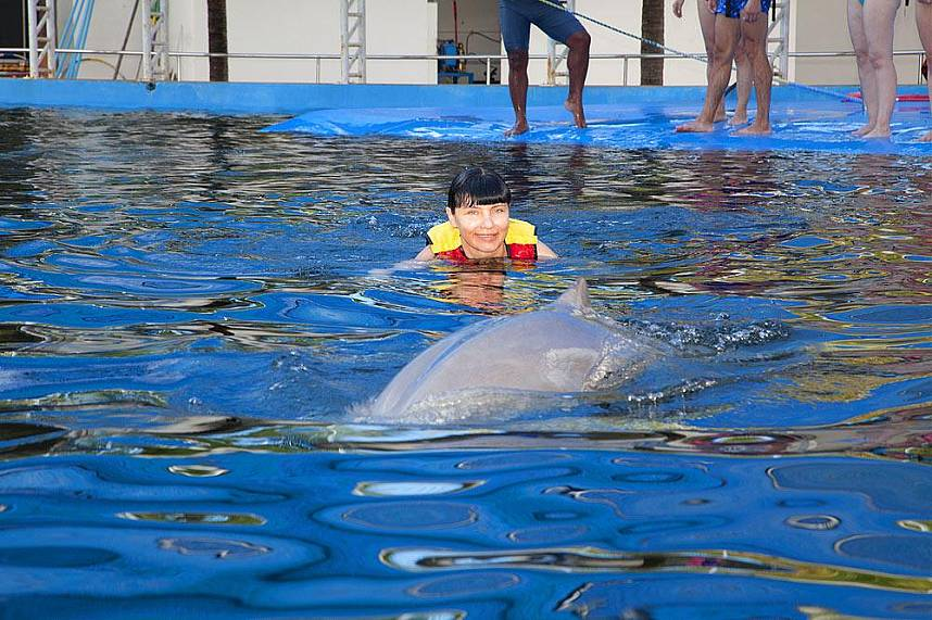 Tourists can interact with the dolphins at Dolphin World Pattaya