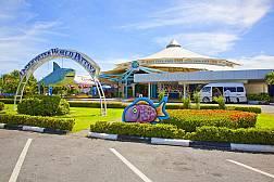 Pattaya Underwater World - Океанариум с редкими обитателями подводного мира в Паттайе