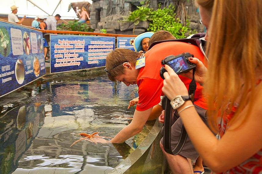 Visitors get close at Underwater World Pattaya