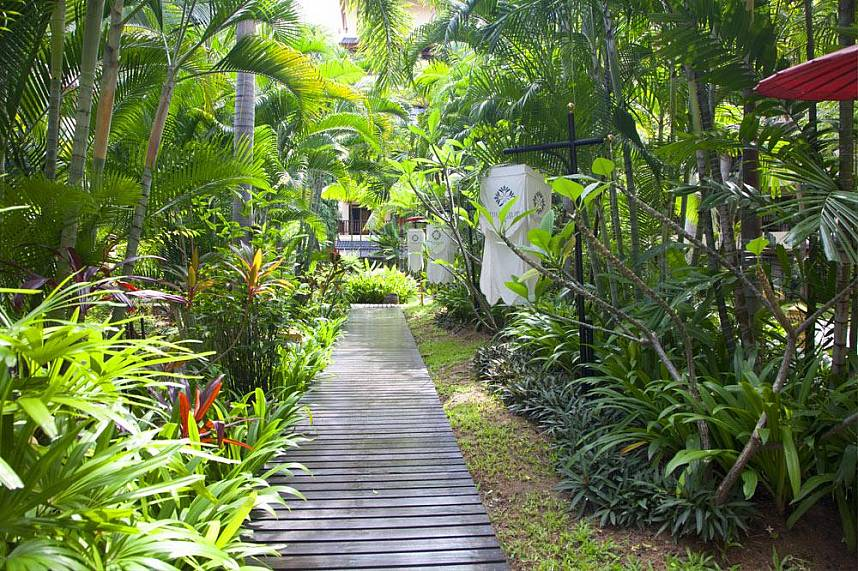 Get the nature feel at Pattaya Oasis Spa