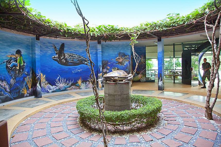 The exhibition at Pattaya Sea Turtle Conservation Center should not be missed out