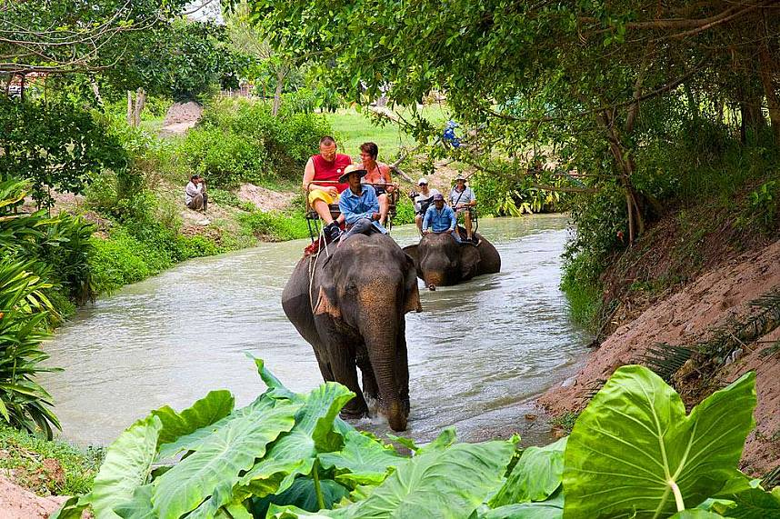 Walk in the river without getting wet - Elephant Village Pattaya