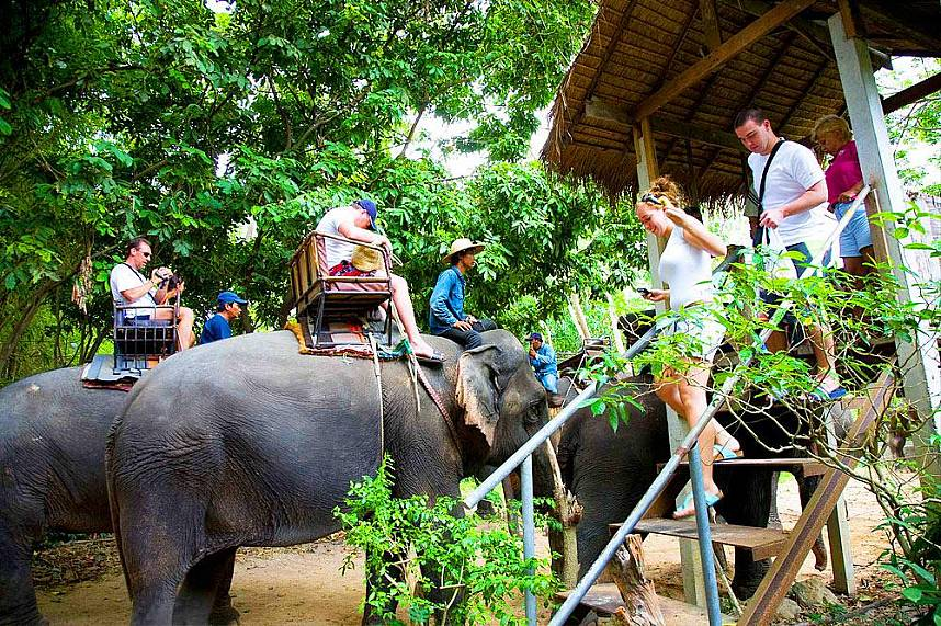 Prepare for a family adventure at Elephant Village Pattaya