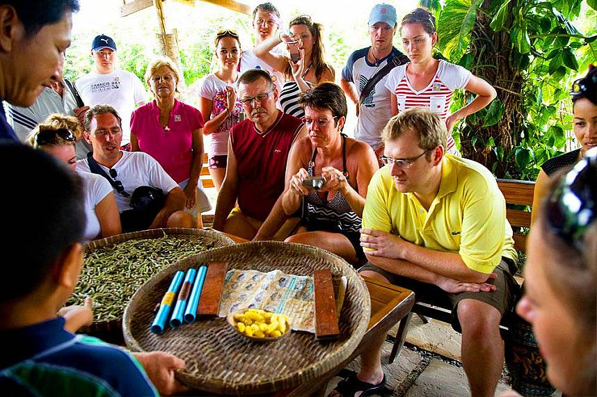Get some great knowledge about Thailand in Elephant Village Pattaya