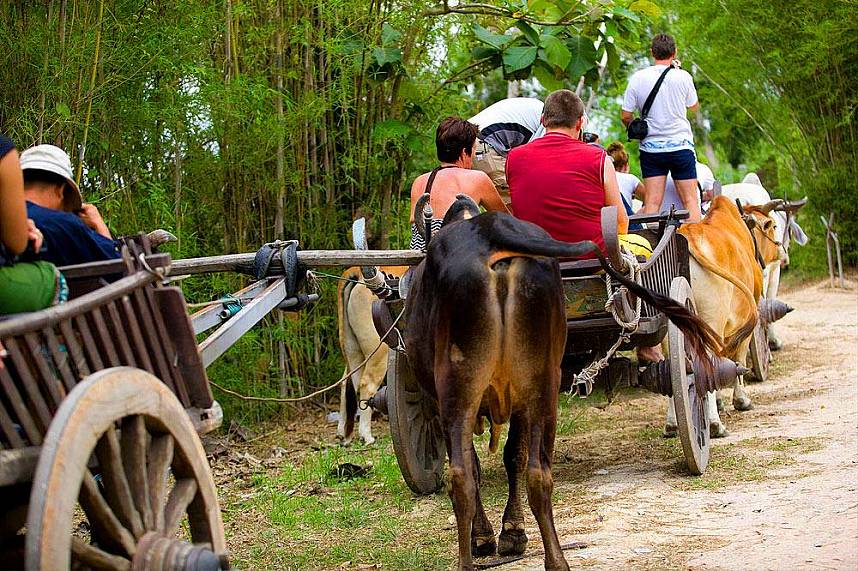 Family adventure during you holiday in Elephant Village Pattaya