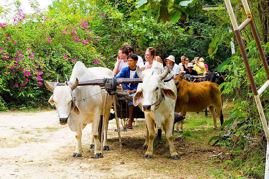 Enjoy the beauty of Thailand at Elephant Village Pattaya