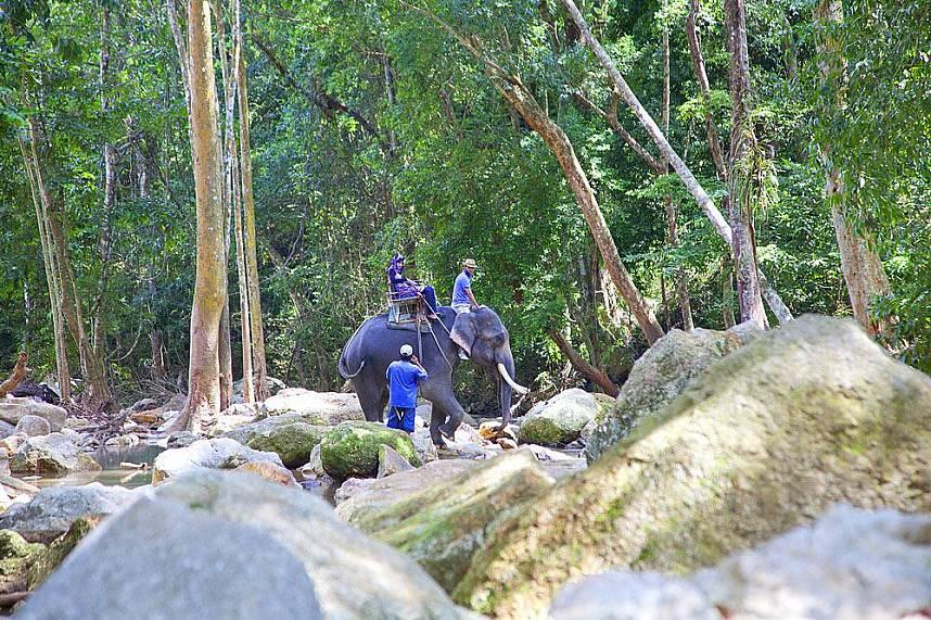 Jungle ride at Koh Samui Na Muang Waterfall
