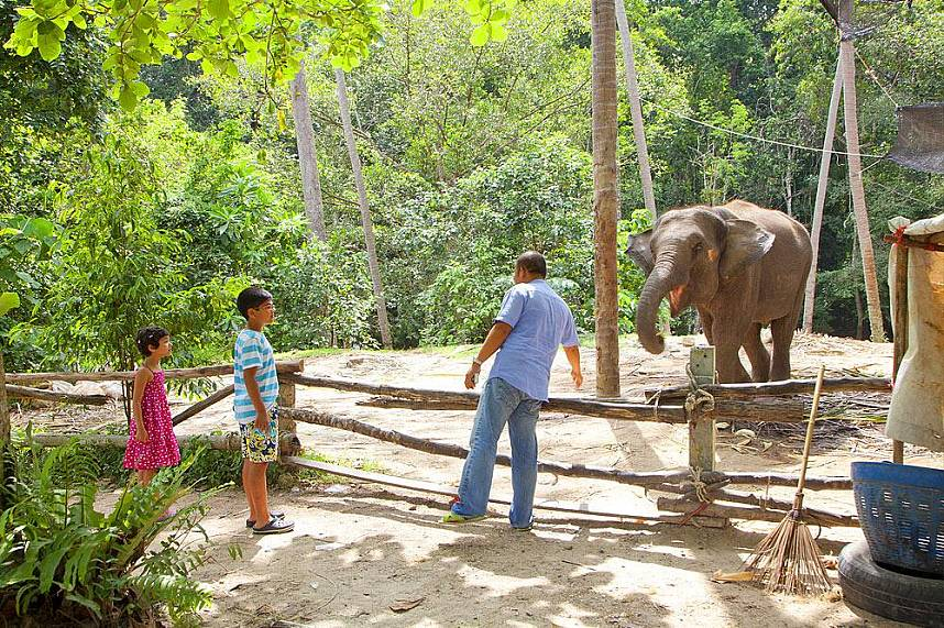 Unique family holiday experience at Na Muang Waterfall Koh Samui