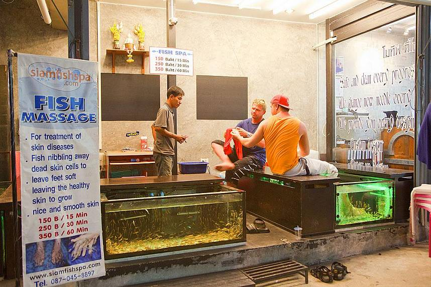 enjoy during your Phuket holiday a fish spa at Kata Beach Phuket
