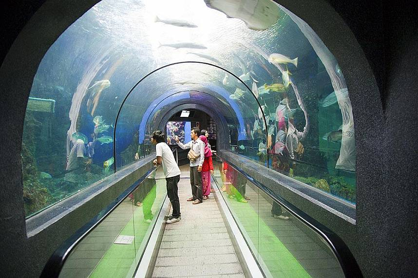 A tunnel leads through Phuket Aquarium