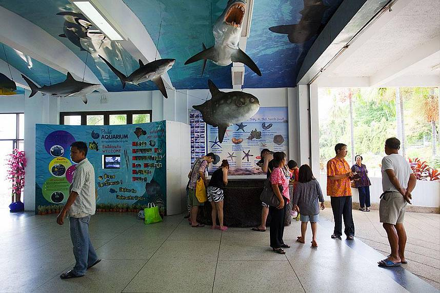 Welcome to Phuket Aquarium