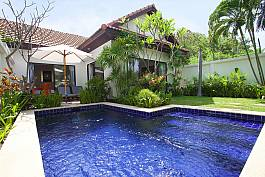 Tropical plants in the garden with swimming pool