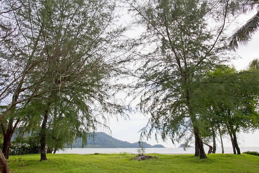 Garden near the sea Of Koh Chang View Villa