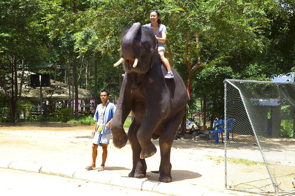 Namuang Safari Park at Koh Samui