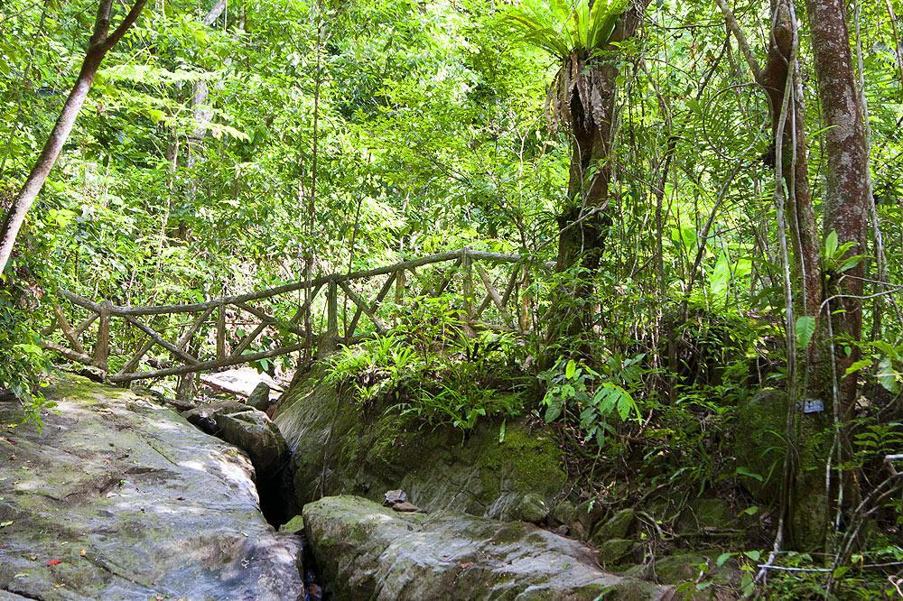 Khao Phra Thrao National Park